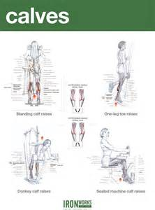 calve muscle exsercise picture 10