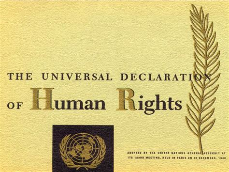 the universal declaration of health picture 5