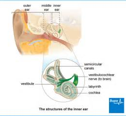 hearing loss and lots of pus in ear picture 8