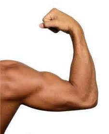 flexing muscles picture 1