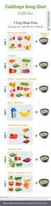 dr t soup diet picture 14