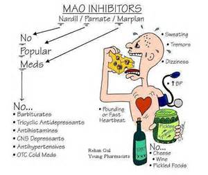 safe diet for maoi inhibitors patients picture 1