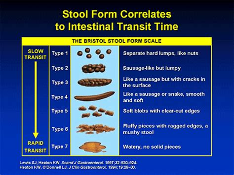 average bowel transit time picture 1