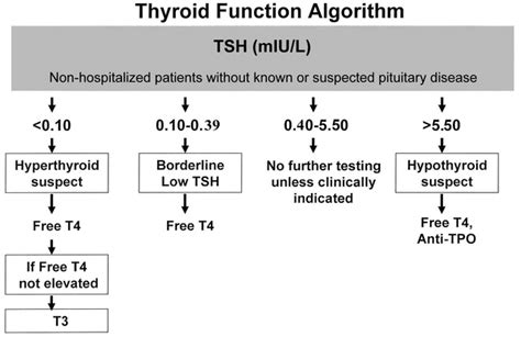 ucla thyroid scan istance picture 6