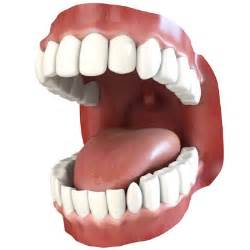animated teeth picture 2