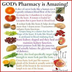 bible diet picture 1