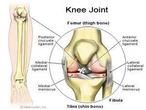 knee - shot for joint pain picture 13