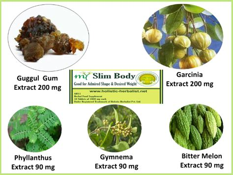 weight loss herbs picture 10