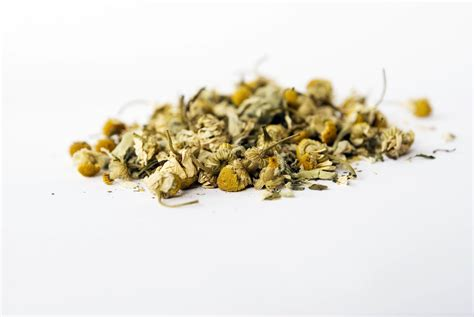 buy red clover herbal picture 14