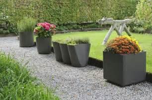 planters picture 2