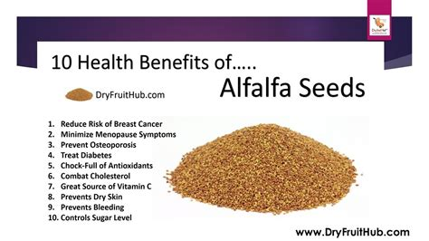 homeopathic alfalfa-health benefits picture 5
