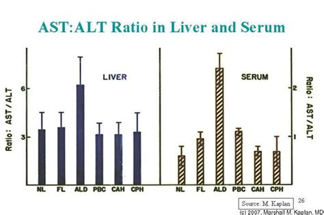 alt and liver function picture 9