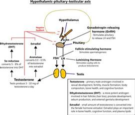 testosterone deficiency voice picture 3