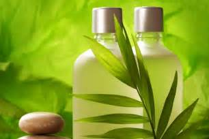 who makes herbal all natural shampoos picture 2