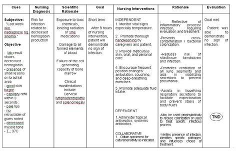 vehicular accident nursing care plan picture 3