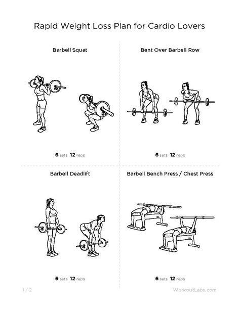 weight training for rapid weight loss picture 1