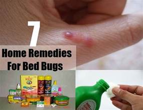 free herbal remedies for bugs picture 1