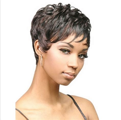american short hair for sale picture 7
