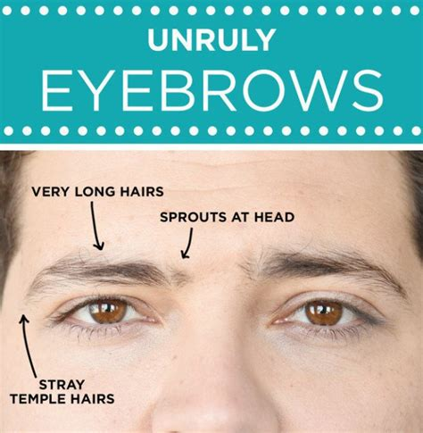 stop eyebrows growing back picture 9