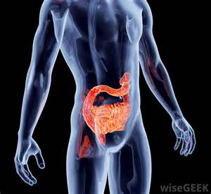 viral infection in the intestine symptoms picture 7