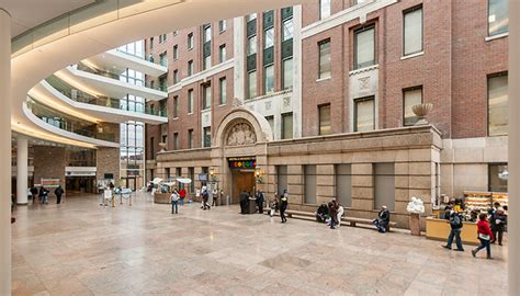 new york city health and hospital corp picture 5