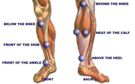 cause of muscle pain in thighs picture 5