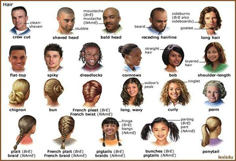 hair terminology picture 14