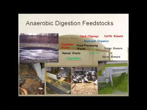 dictionary anaerobic digestion picture 1