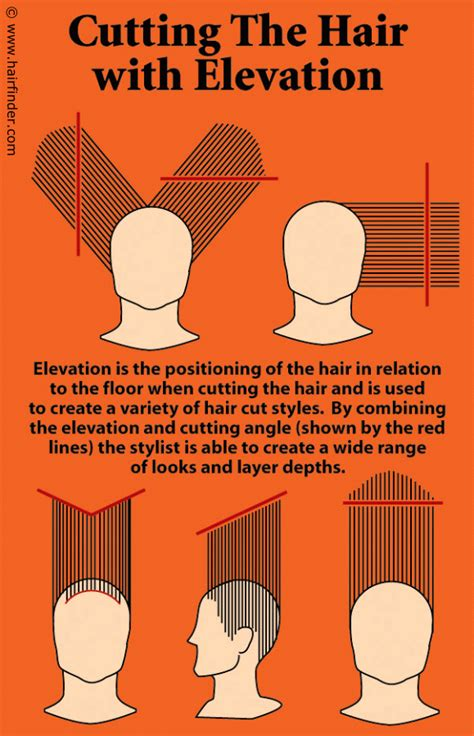 cut hair instructions picture 5