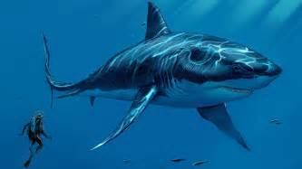 pictures of prehistoric shark h picture 5