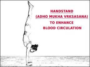 blood circulation enhancer picture 1