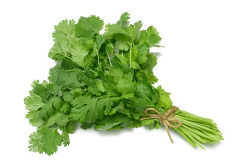 avocado leaves parsley tea for miscarriage picture 11