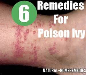 herbal cures for poison oak picture 15