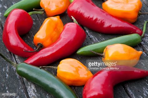 cayenne pepper erection size picture 15