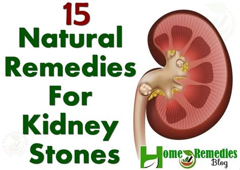 what natural herbs can u take to cleanse your ovaries picture 16