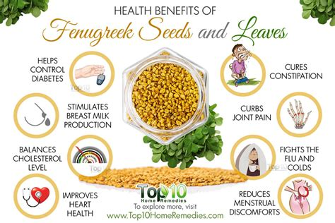 fenugreek uses picture 3