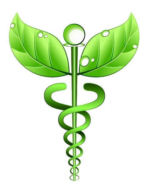 medical herbal treatments picture 19
