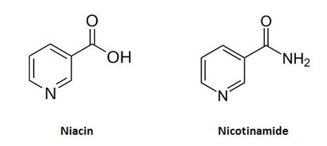 Niacin high cholesterol picture 1