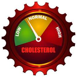 How to add total cholesterol picture 2