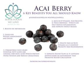 acai berry benefits picture 10