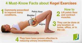 kegel; exercise helps to p bowel movements picture 2
