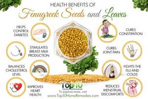 benefits of fenugreek extract picture 2