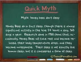 sleep myths picture 6