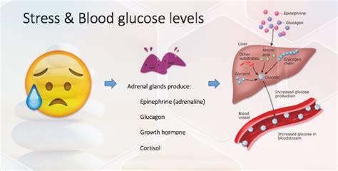 can stress elevate blood sugar in non diabetics picture 2