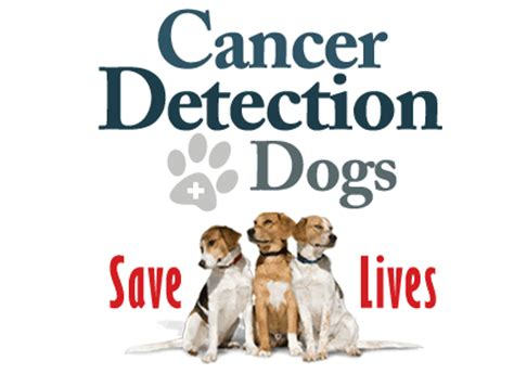 canine prostate cancer support group picture 3