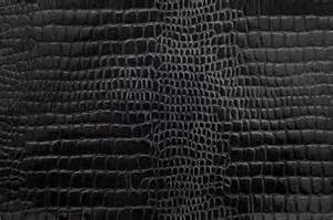 snake skin s picture 15