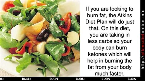 atkins diet support picture 9