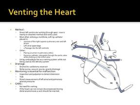 Heart blood flow picture 9