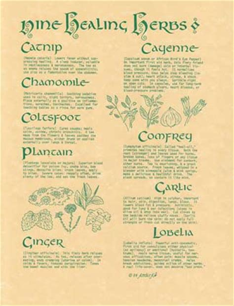 wicca weight loss corresponding herbs picture 6