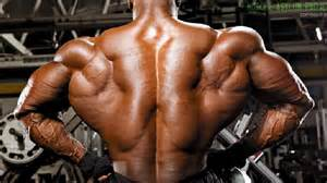 deep muscle picture 19